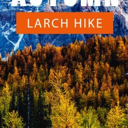 Valley of the Ten Peaks: Larch Valley Hike and Sentinel Pass