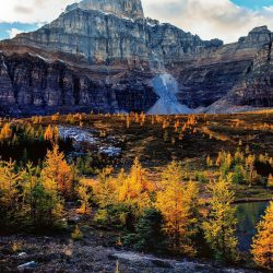 valley of the ten peaks lark valley banff alberta