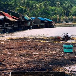 Sustainable Travel and Responsible Travel in Cambodia