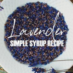 Lavender Simple Syrup Recipe made with real Lavender flowers