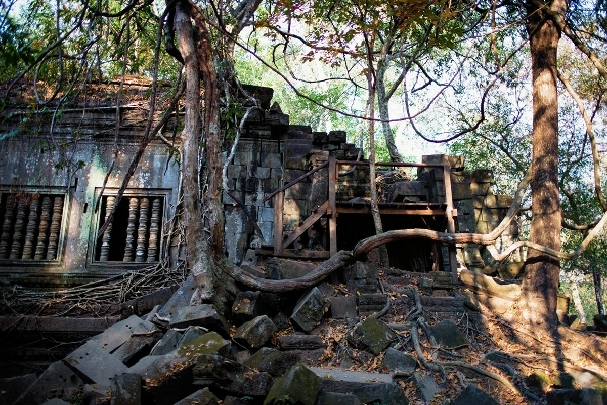 Beng Mealea taken by the jungle