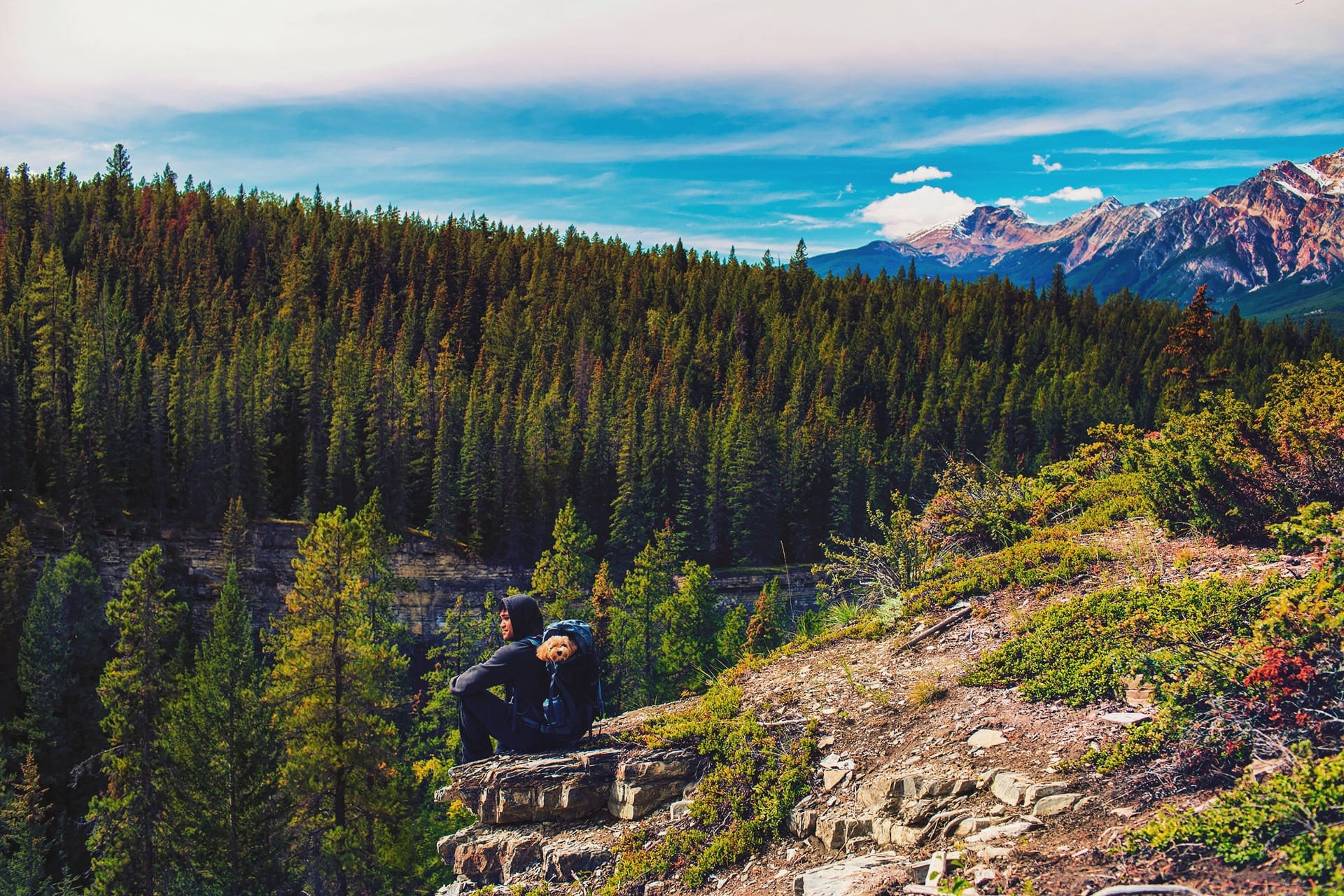 Enjoying the view of mountains and forest from the edge of a cliff at Maligne Canyon in Jasper National Park
