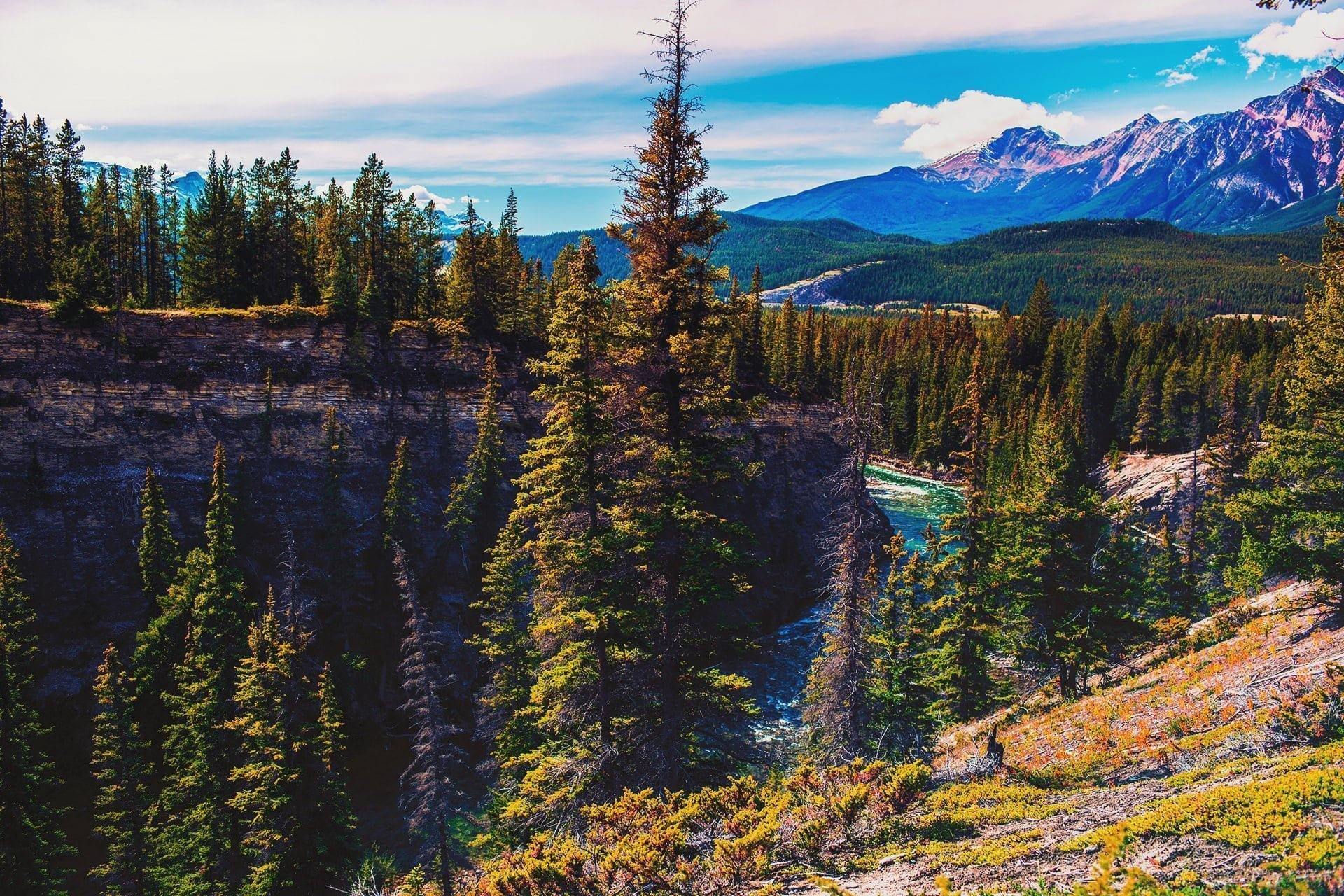 River forest and mountains can be seen at Maligne Canyon Hike in Jasper National Park Alberta Canada