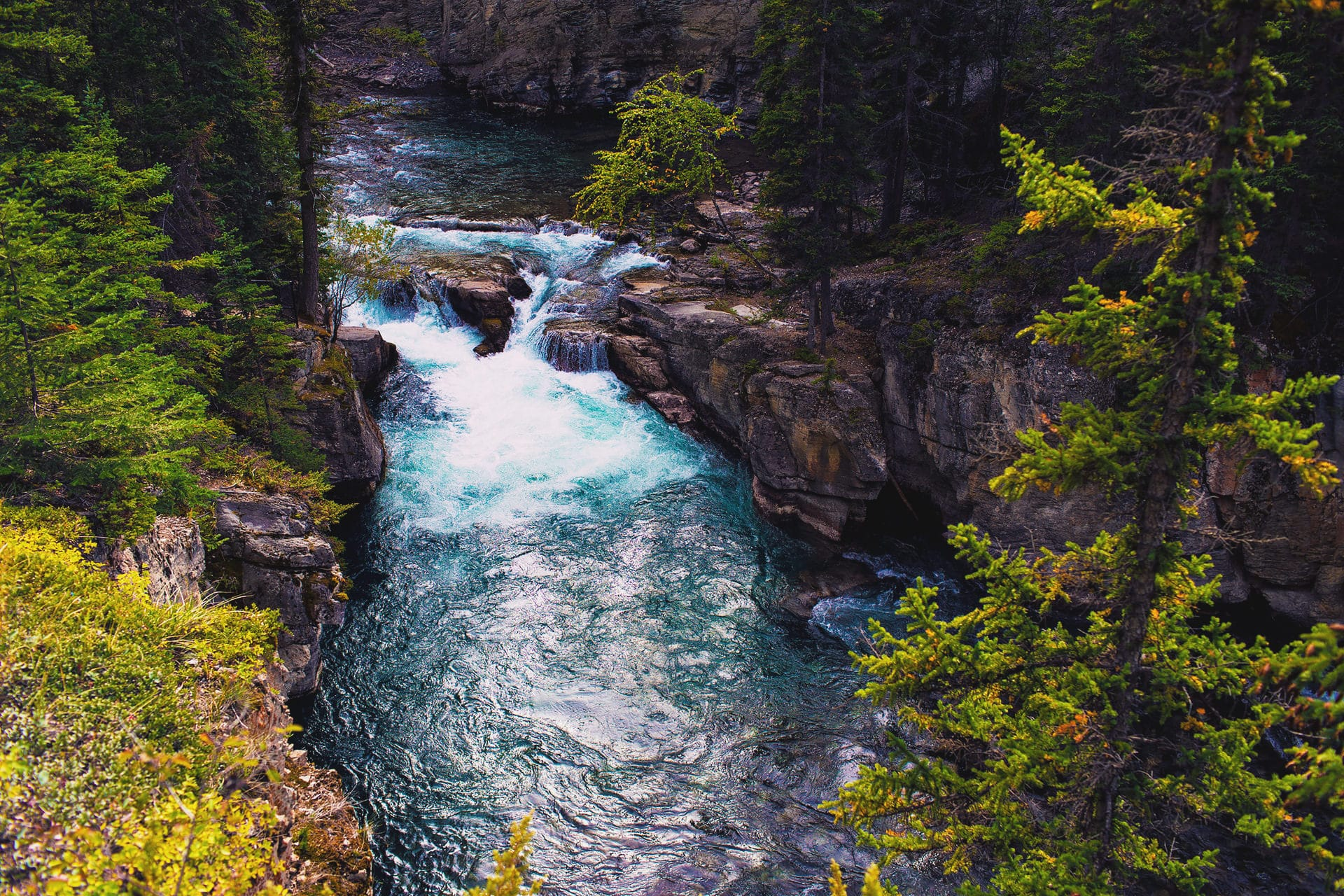 Cascades along the river at Maligne Canyon Hike in Jasper National Park Alberta Canada