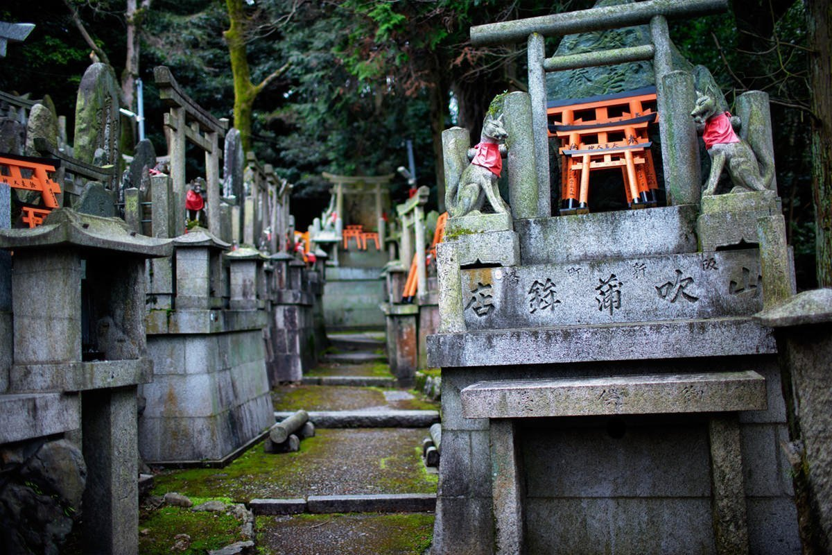 Numerous Inari fox statues at Fushimi Inari Shrine