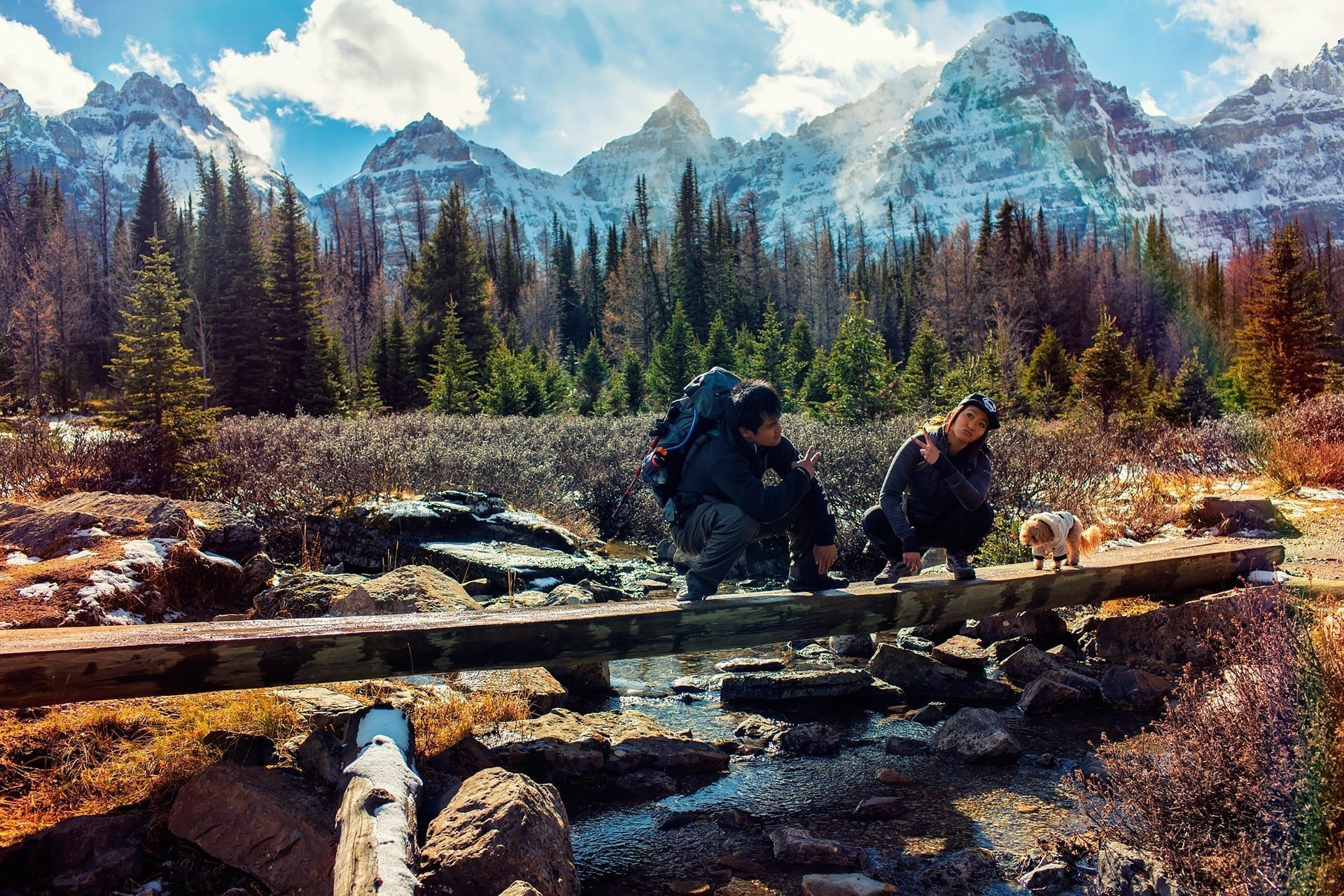 Sitting on a long log that crosses a river at valley of the ten peaks alberta canada