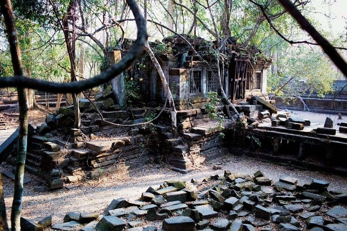 swinging jungle vines engulfs Beng Mealea