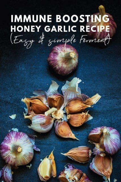 Healthy Immune Boosting Garlic Honey Ferment Recipe Easy Fermentation