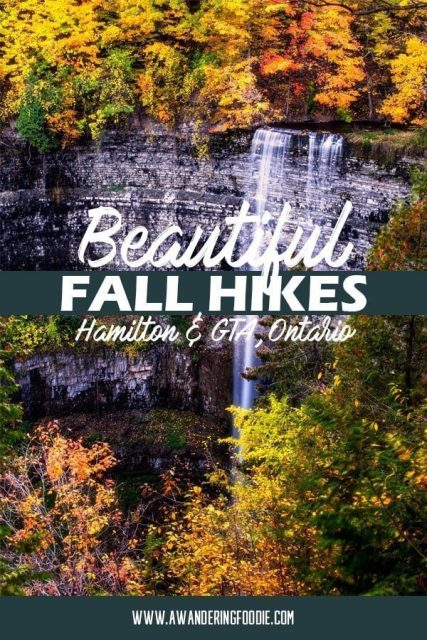 The Best Fall Hikes in the Hamilton GTA